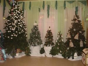 Много-много елочек-красавиц в доме у Деда Мороза