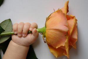 праздник смотрины новорожденного