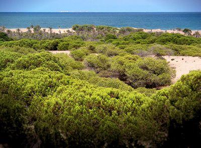 Рохалес, пляж гвардамар