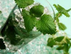 рецепты мохито